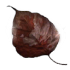 Icon Item Forgotten Leaf.png